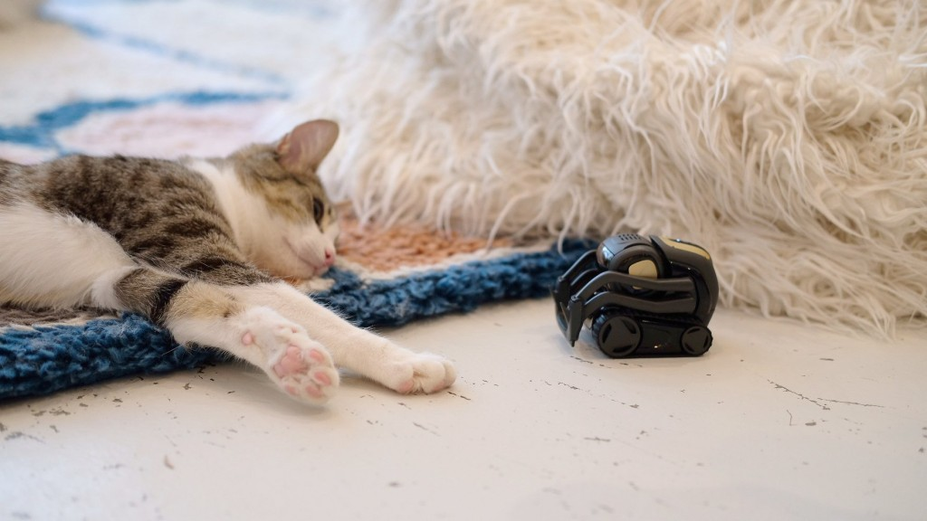 The important reason these tiny robots are taking pics of cats