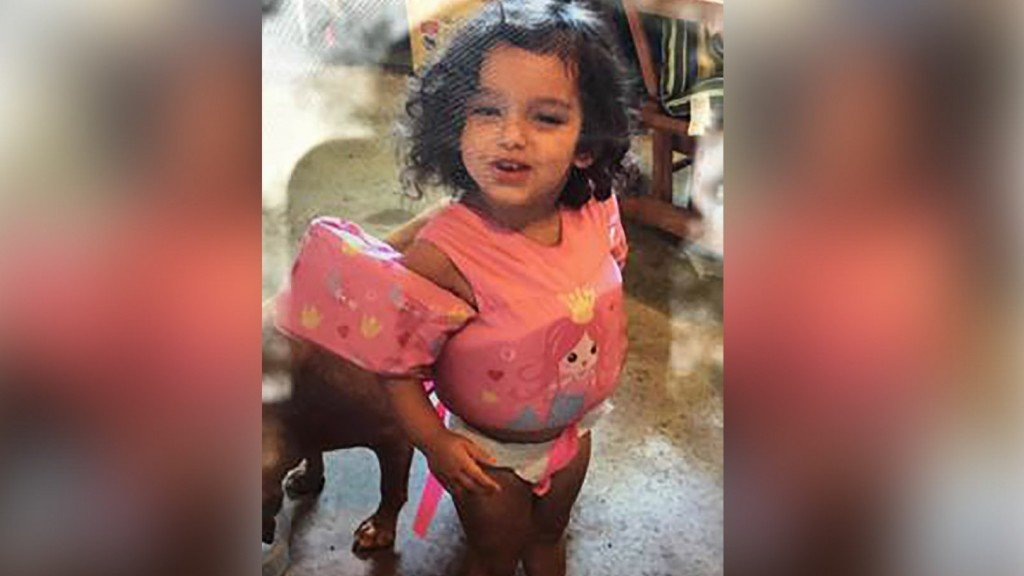 Toddler who disappeared in Michigan woods found safe