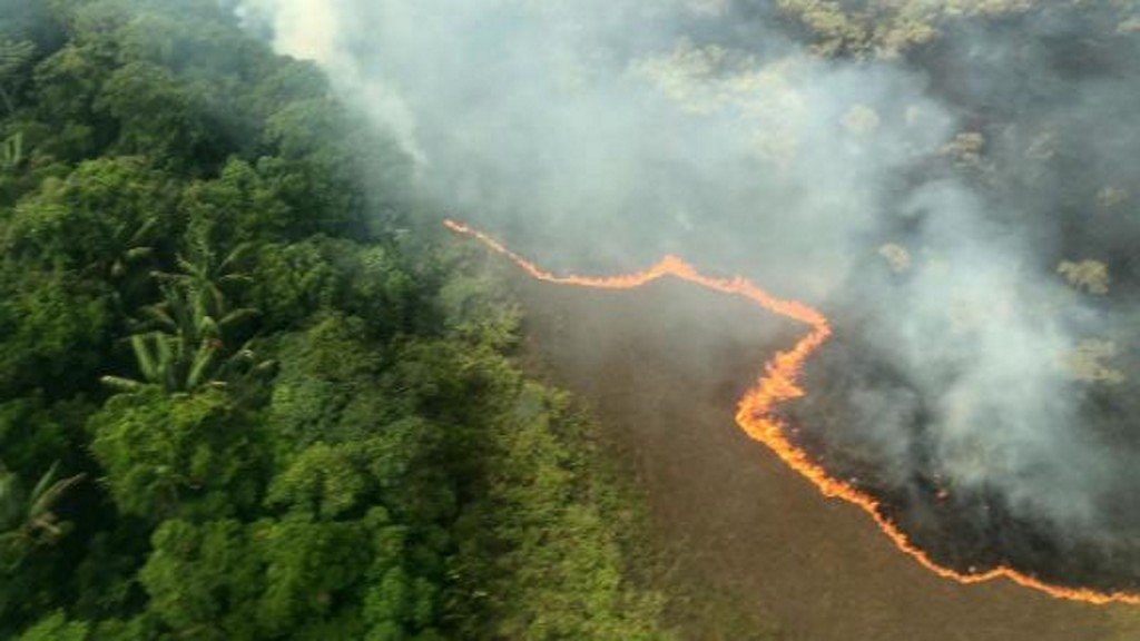 The Amazon is still burning