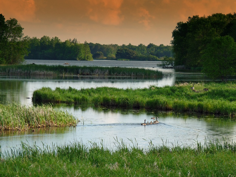 Assembly to vote on wetland permit exemptions bill