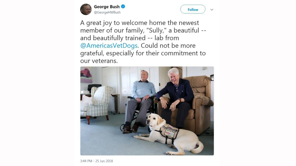 George H.W. Bush enlists help of new service dog Sully