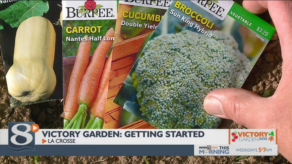 Victory Garden: Getting Started