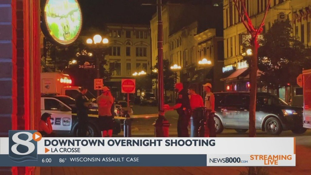 'people Basically Were Screaming,' Witness From Overnight Shooting Says