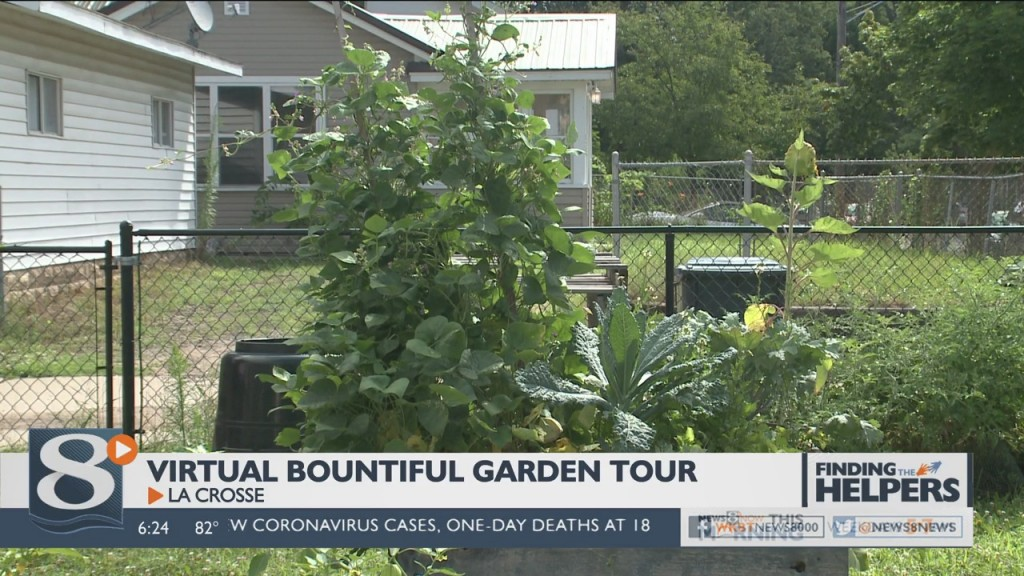 People In The Coulee Region Have A Chance To Show Off Their Garden