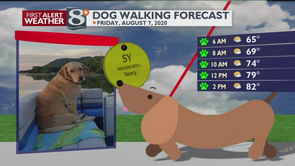 Dog Walking Forecast 8/7/20