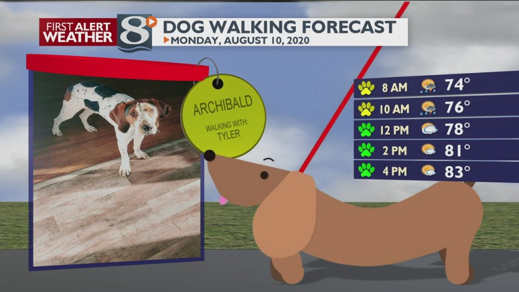 Dog Walking Forecast 8/10/20