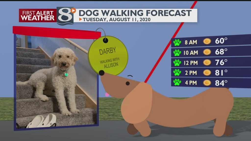 Dog Walking Forecast 8/11/20