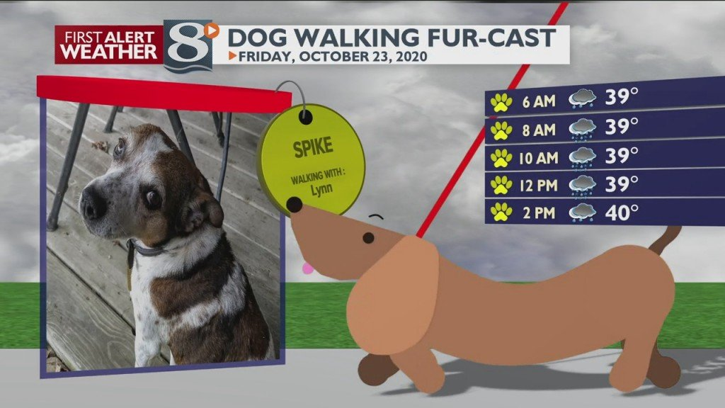 Dog Walking Fur Cast 10/23/20