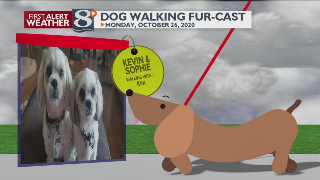 Dog Walking Fur Cast 10/26/20