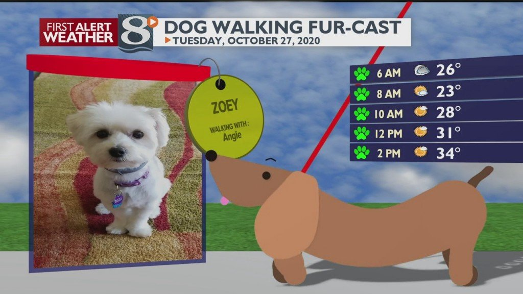 Dog Walking Fur Cast 10/27/20