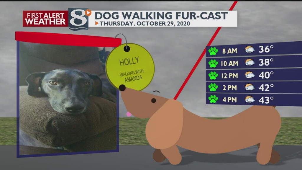 Dog Walking Fur Cast 10/29/20