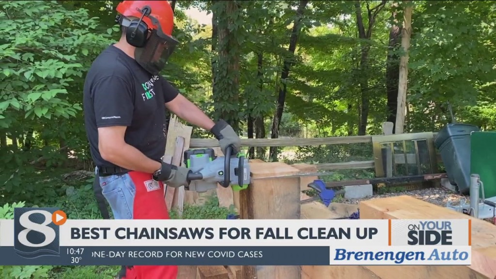On Your Side Best Chainsaws For Fall Cleanup