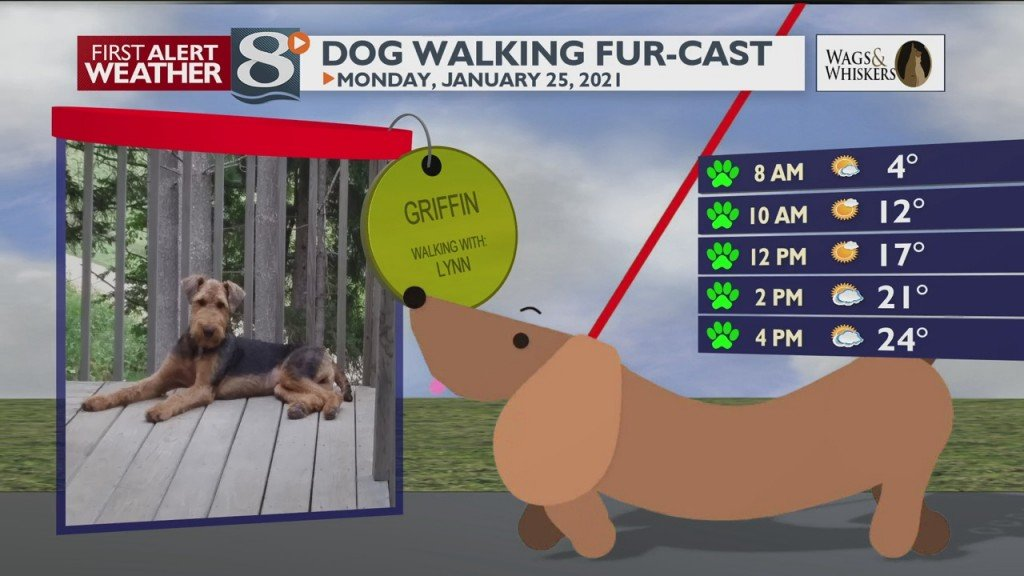 Dog Walking Fur Cast 1/25/21