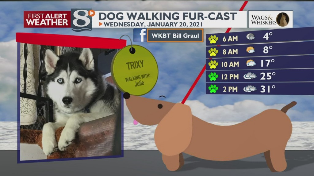 Dog Walking Fur Cast 1/20/21