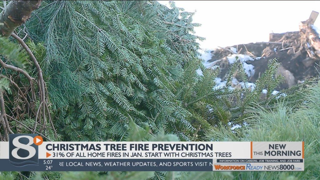 Why Your Christmas Tree Could Be A Serious Fire Hazard