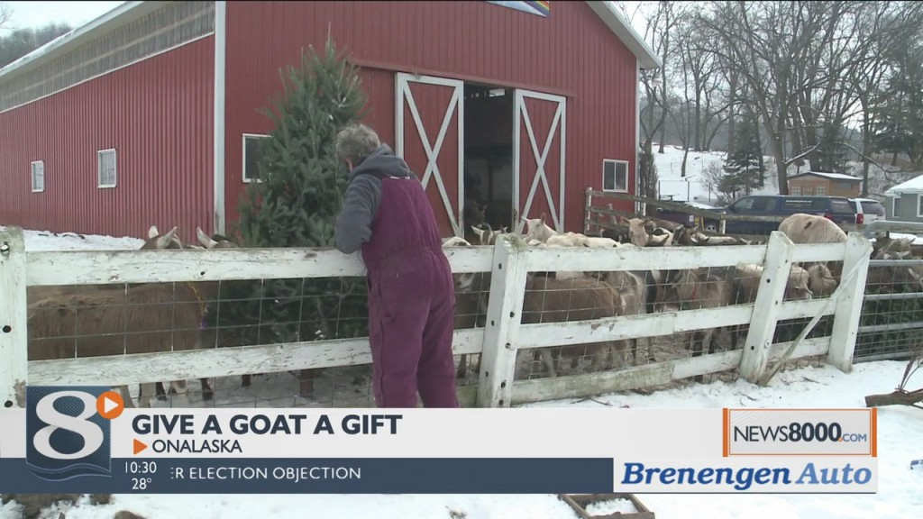 Give A Goat A Gift