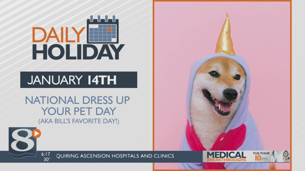 Daily Holiday National Dress Up Your Pet Day
