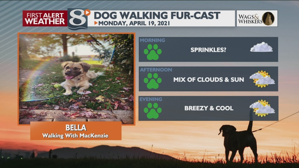 Dog Walking Fur Cast 4/19/21