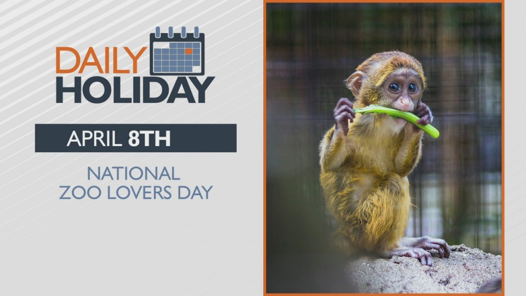 Daily Holiday National Zoo Lovers Day