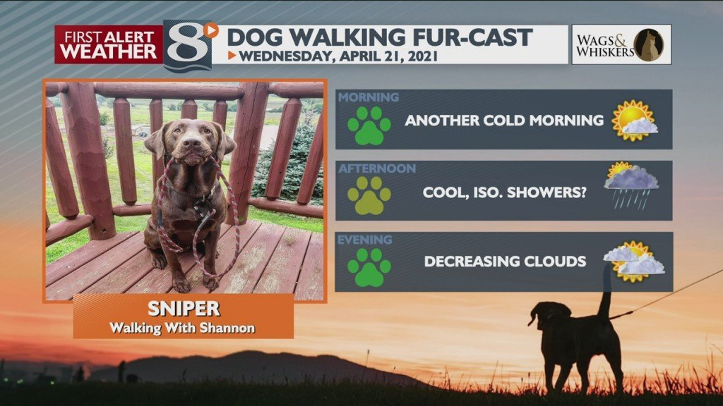 Dog Walking Fur Cast 4/21/21