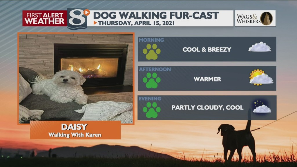 Dog Walking Fur Cast 4/15/21