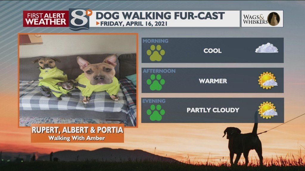 Dog Walking Fur Cast 4/16/21