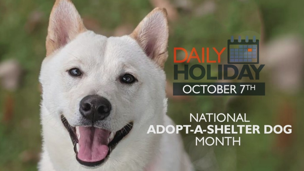 Daily Holiday National Adopt A Shelter Dog Month