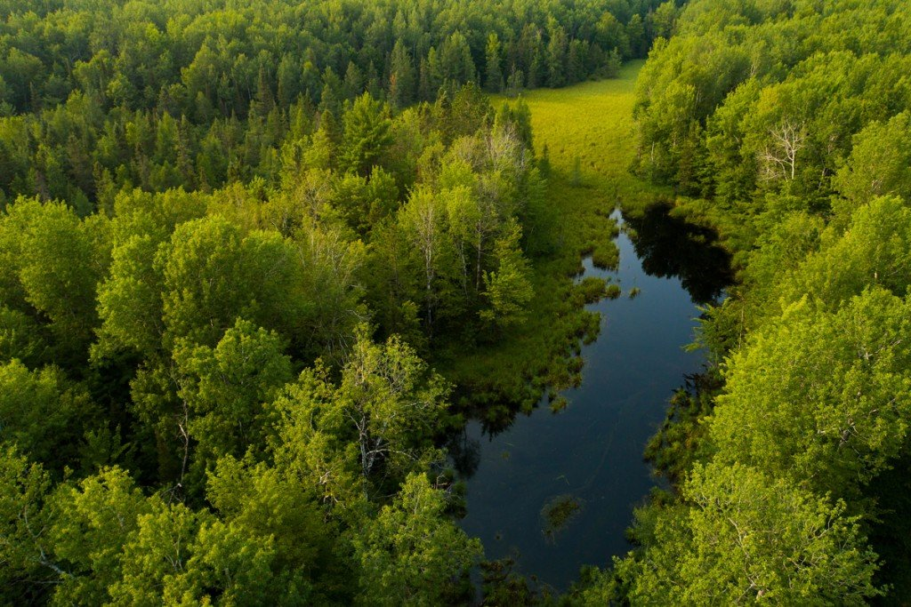 Pelican River Area In Wisconsin The Conservation Fund