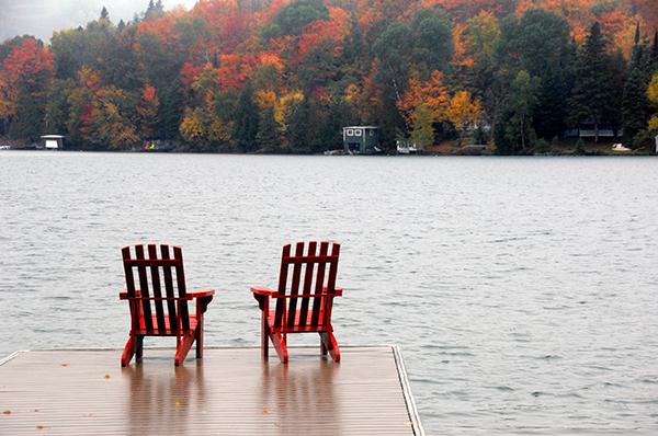 Foliage Chairs