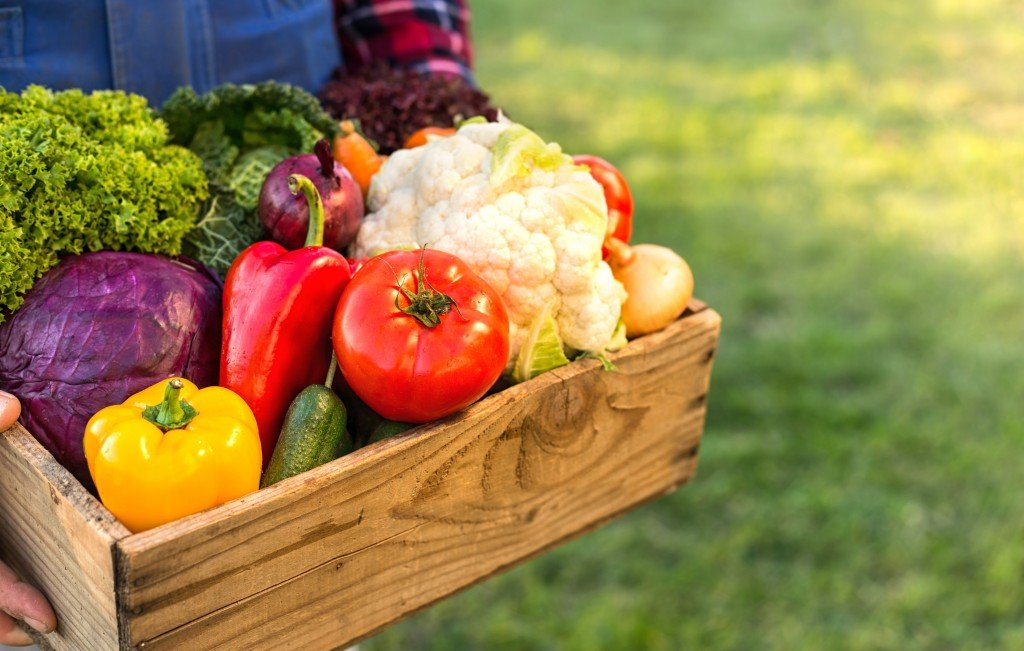 Farmer Holding Box With Vegetables