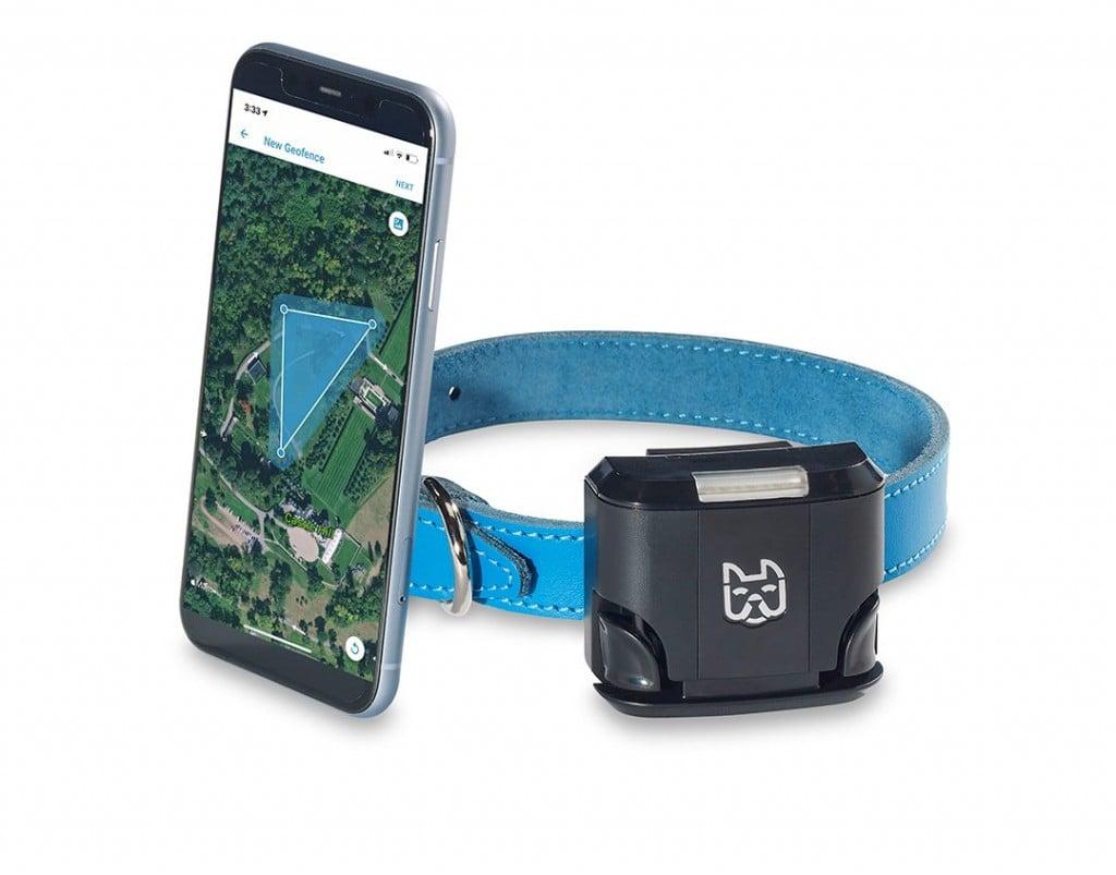 Wagz Freedom Smart Collar