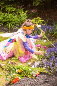 Fairy, Wizard and Dragon Festival @ Kimball Jenkins | Concord | New Hampshire | United States