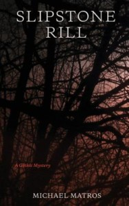 """Slipstream Rill"" by Michael Matros @ Gibson's Bookstore | Concord | New Hampshire | United States"