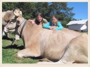 10th Annual Harvest Festival @ Prescott Farm Environmental Education Center | Laconia | New Hampshire | United States