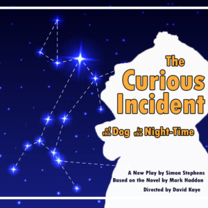 """""""The Curious Incident of the Dog in the Night-Time"""" @ UNH Hennessy Theatre 