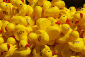 Auburn Day and 27th Annual Duck Race @ Auburn Village | Auburn | New Hampshire | United States
