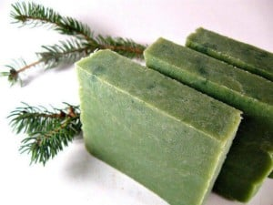Soapmaking for the Holidays [ADULTS] @ Prescott Farm Environmental Education Center | Laconia | New Hampshire | United States