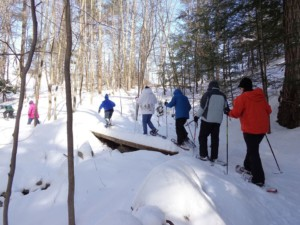 Beginner Snowshoe Class for Adults @ Prescott Farm Environmental Education Center | Laconia | New Hampshire | United States