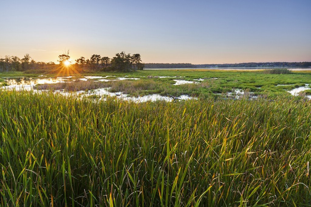 Sunset Over The Marsh At The Southern End Of Great Bay As Seen From The Boardwalk At The Great Bay Discovery Center In Greenland, New Hampshire.