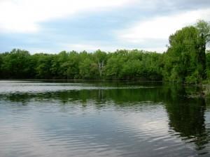Nutts Pond