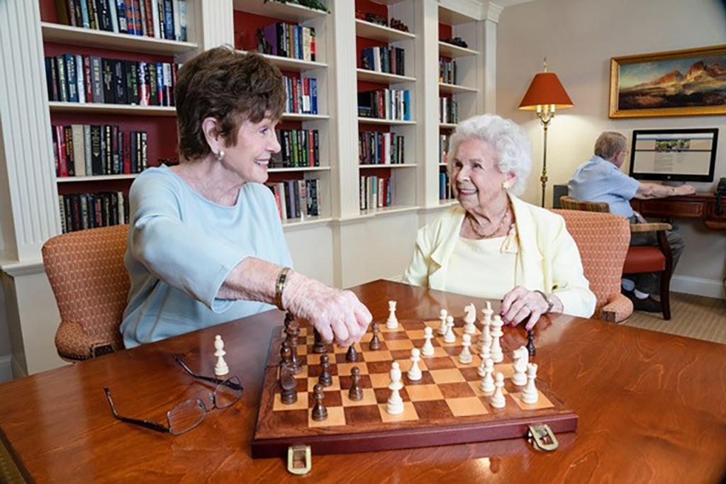 Windam Chess Game