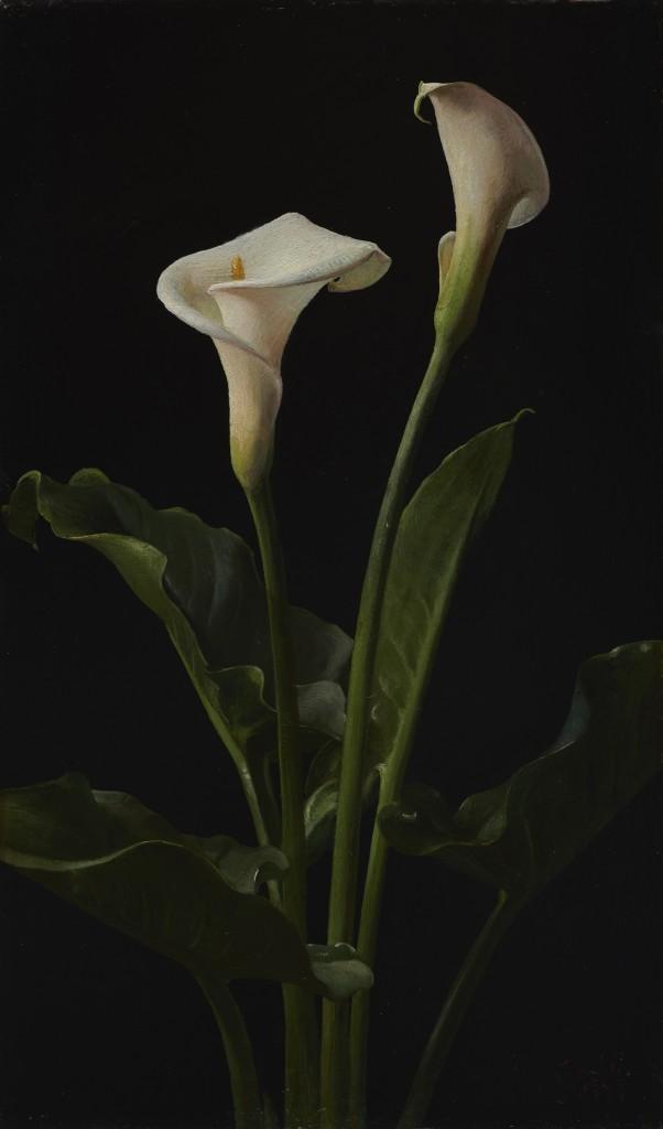 Calla Lilies George Cochran Lambdin