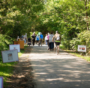 11th Cribs for Kids® Breath of Life Stroll @ North Shore Trail |  |  |