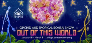 Orchid and Tropical Bonsai Show: Out of This World @ Phipps Conservatory and Botanical Gardens | | |
