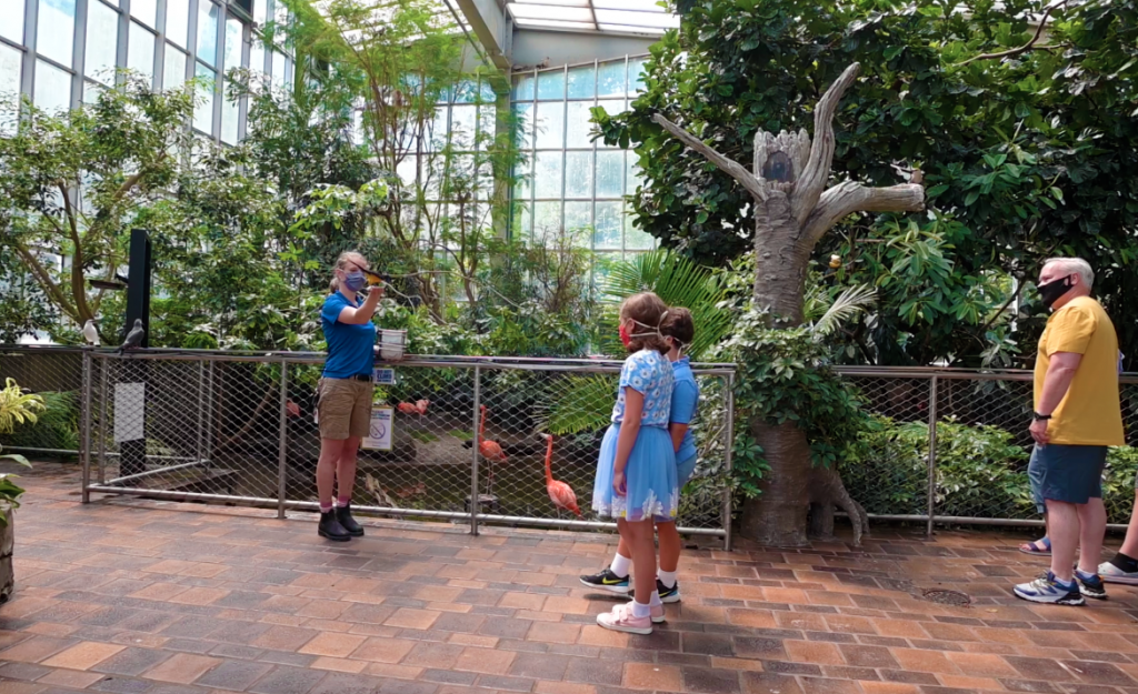 National Aviary Immersive Experience In Wetlands