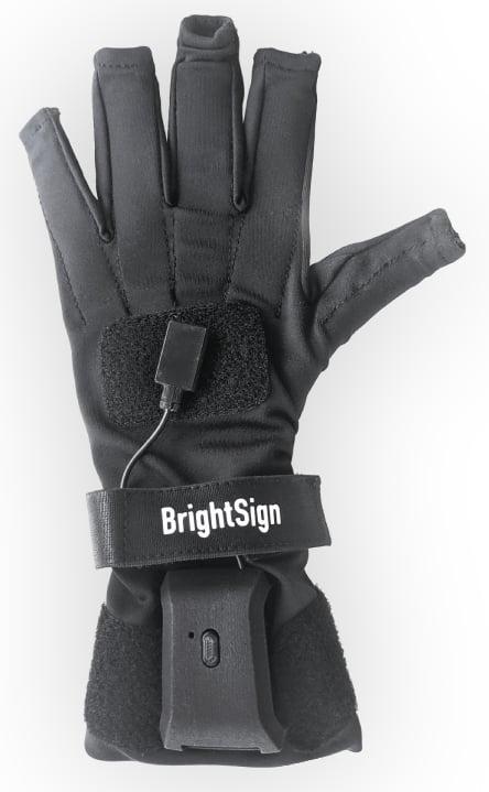 Bs Glove Render Cropped