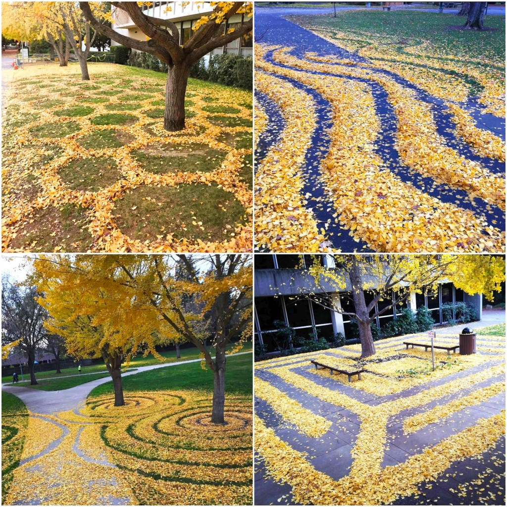 Leafartcollage