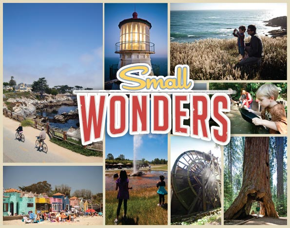 Small Wonders Open