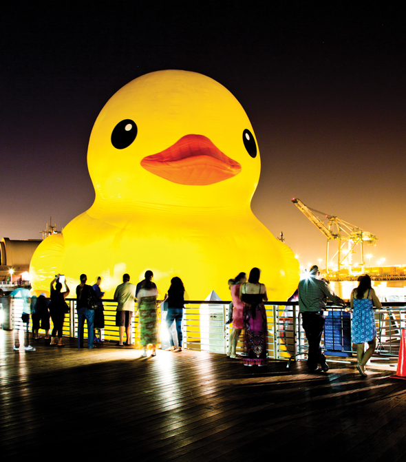 Rubber Duck590