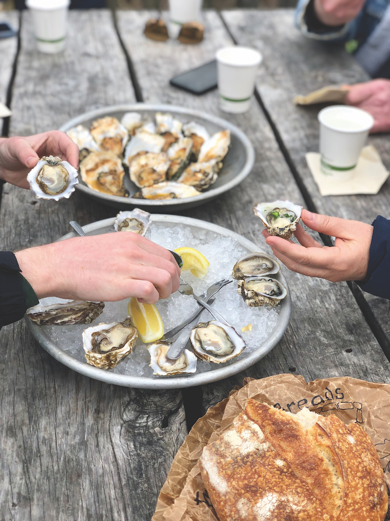 Shuck and slurp your way through Tomales Bay with Food & Farm Tours' oyster outings. (Photo courtesy of Food & Farm Tours)
